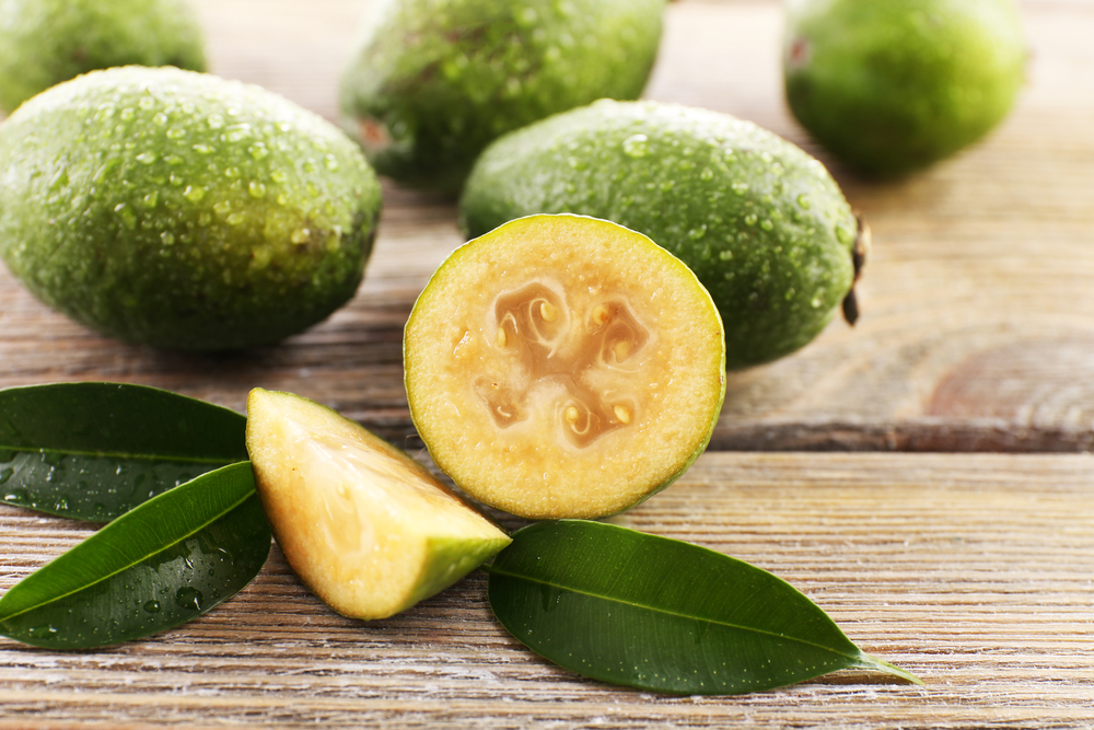 Feijoa Inhibits TLR2-Induced Inflammation Suggesting a Role for Dietary Control in IBD Management
