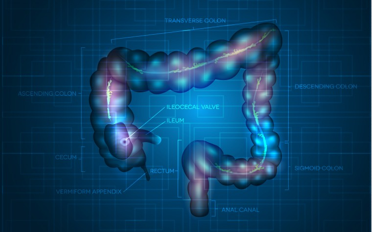 Phase 3 trial results for Stelara for Crohn's disease