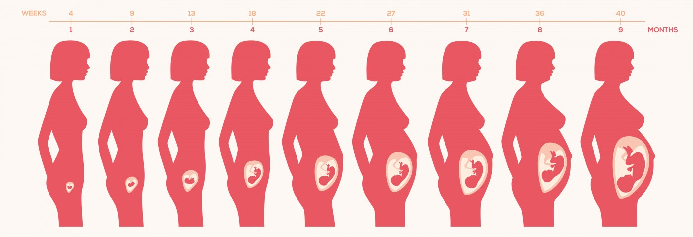 Placental Inflammation Not Related to Poor Birth Outcomes in Women with IBD
