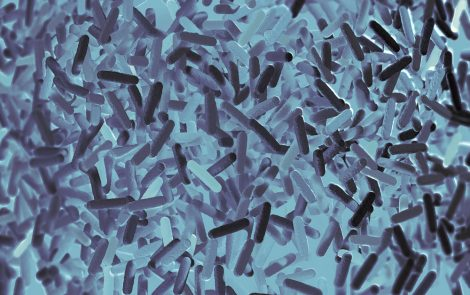 Certain Bacteria Within Gut Microbiome May Halt Inflammation Naturally, Study Says