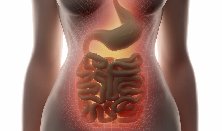 Crohn S Related Anal Fistula Therapy Cx601 To Get Swiss